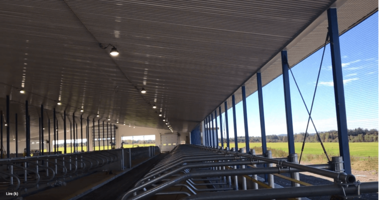 Éclairage agricole au DEL ferme laitière.