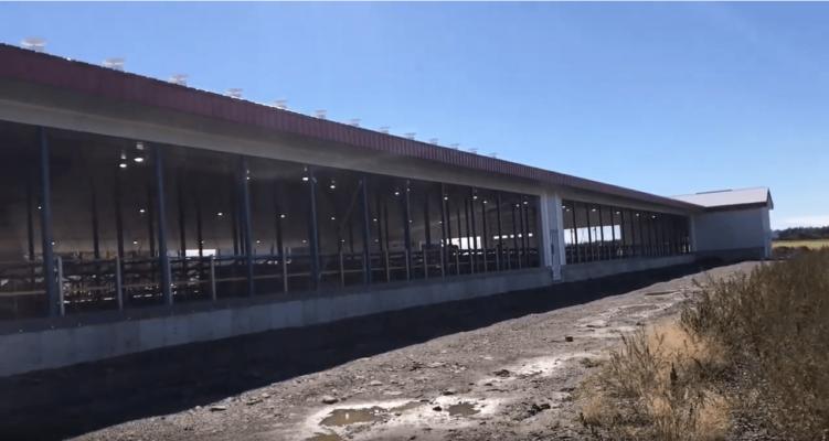 Éclairage agricole d'une ferme laitière
